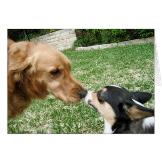 Dog Kiss Romantic Valentine's Day Card