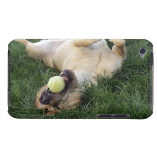 Dog laying upside down in grass with tennis ball barely there iPod cover