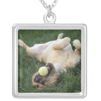 Dog laying upside down in grass with tennis ball silver plated necklace