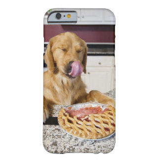 Dog licking nose after eating cherry pie in barely there iPhone 6 case