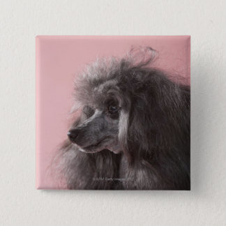 Dog looking away 15 cm square badge