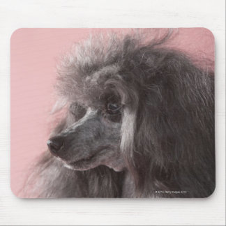 Dog looking away mouse pad