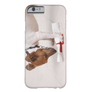 Dog looking down a diploma barely there iPhone 6 case