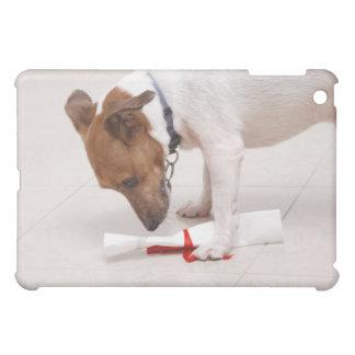Dog looking down a diploma iPad mini case