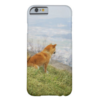 Dog looking down from on hill barely there iPhone 6 case