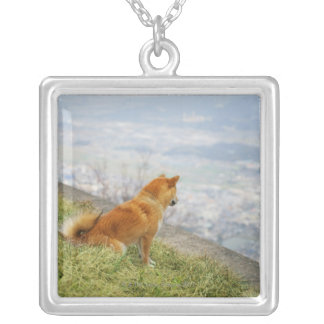 Dog looking down from on hill silver plated necklace