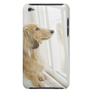 Dog looking out window iPod touch cases