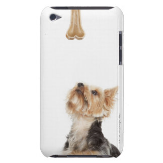 Dog looking up at bone iPod Case-Mate cases