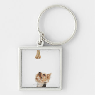 Dog looking up at bone Silver-Colored square key ring