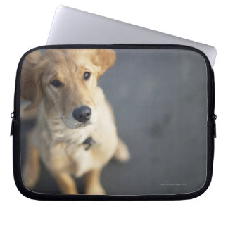 Dog looking up, close-up laptop sleeve