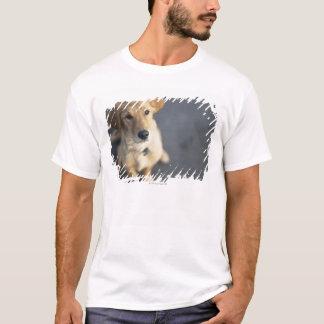 Dog looking up, close-up T-Shirt