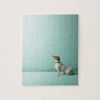 dog looking up into space jigsaw puzzle