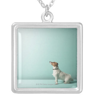 dog looking up into space silver plated necklace