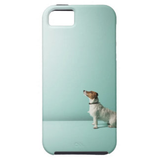 dog looking up into space tough iPhone 5 case