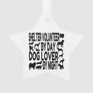 Dog Lover Shelter Volunteer