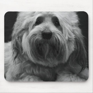 Dog Lovers, Cute Doggy Mouse Pad