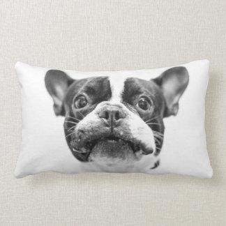 dog lumbar cushion