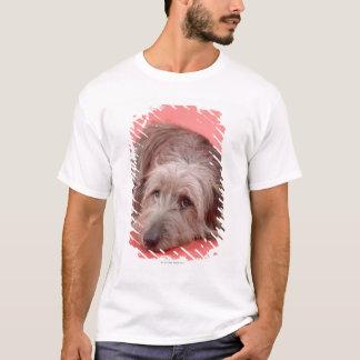 Dog lying down T-Shirt