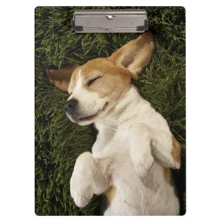 Dog Lying in Grass Sleeping Clipboard