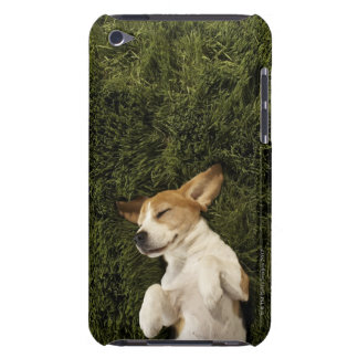 Dog Lying in Grass Sleeping iPod Touch Case-Mate Case