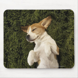 Dog Lying in Grass Sleeping Mouse Pad
