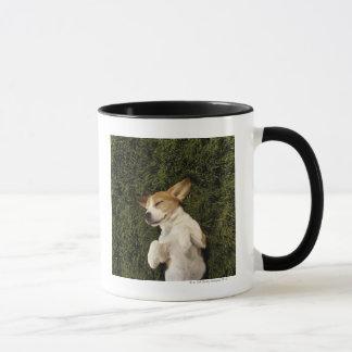 Dog Lying in Grass Sleeping Mug