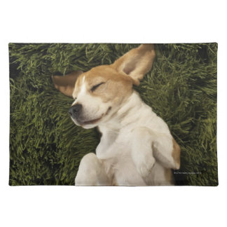 Dog Lying in Grass Sleeping Placemat