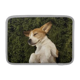 Dog Lying in Grass Sleeping Sleeve For MacBook Air