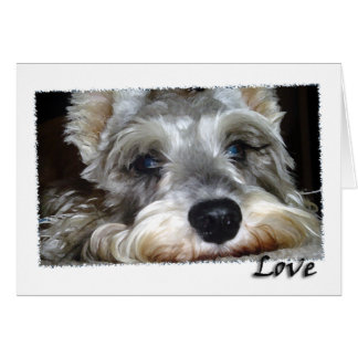 DOG: Mini German Schnauzer w/Love Card