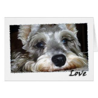 DOG: Mini German Schnauzer w/Love Greeting Card