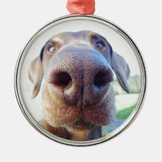 Dog nose closeup Silver-Colored round decoration