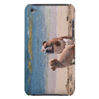 Dog of Sandy Beach Barely There iPod Case