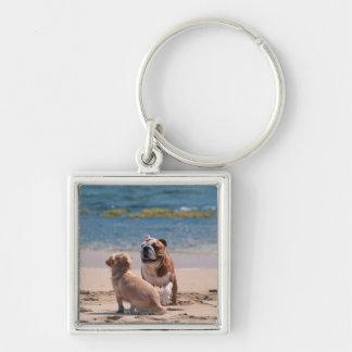 Dog of Sandy Beach Key Ring
