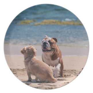 Dog of Sandy Beach Plate