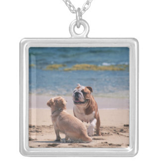 Dog of Sandy Beach Silver Plated Necklace