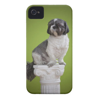 Dog on a column iPhone 4 Case-Mate case