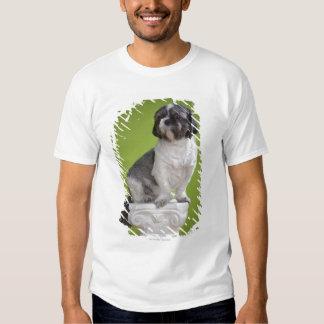 Dog on a column t shirts