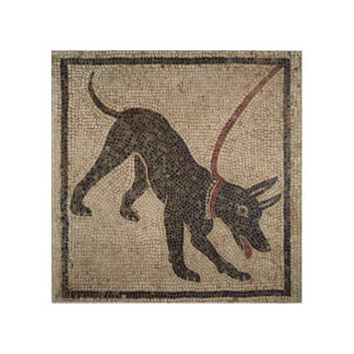 Dog on a leash, from Pompeii Wood Canvas