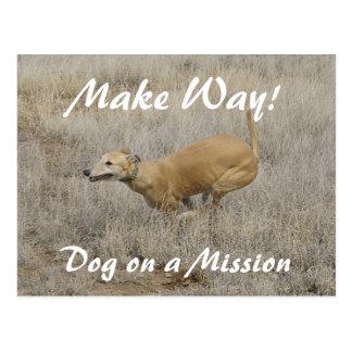 Dog on a Mission Postcard