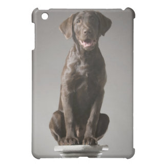 dog on a pedestal cover for the iPad mini