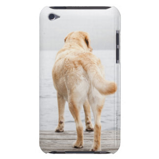 Dog on dock iPod Case-Mate cases