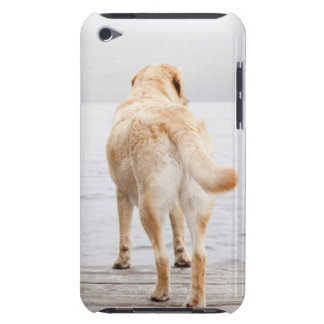 Dog on dock iPod touch cover