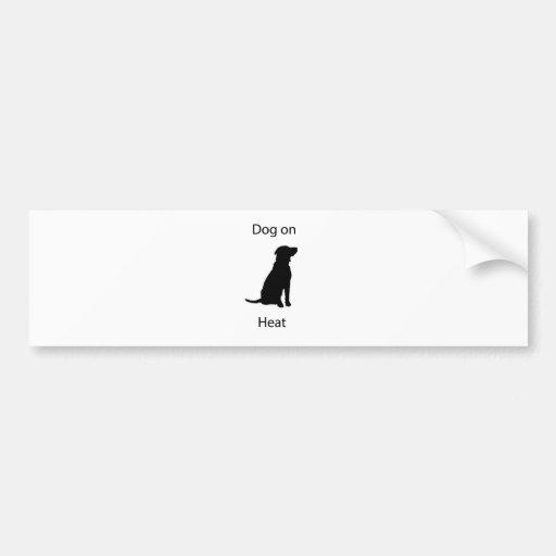 Dog on heat bumper sticker