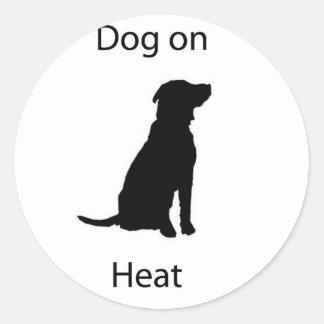 Dog on heat classic round sticker