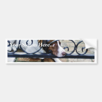 Dog On Iron Hand Work Bumper Stickers