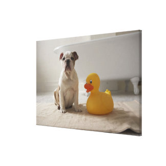 Dog on mat with plastic duck canvas print