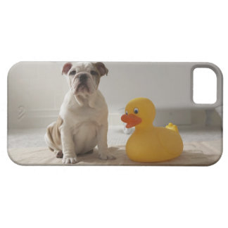 Dog on mat with plastic duck iPhone 5 covers
