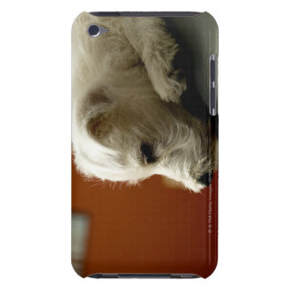 Dog on office chair iPod Case-Mate cases