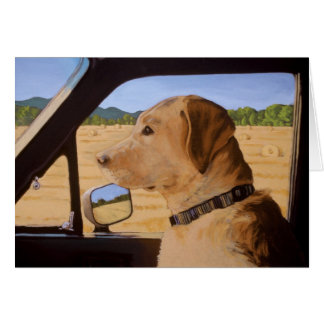 Dog on the Go Greeting Card