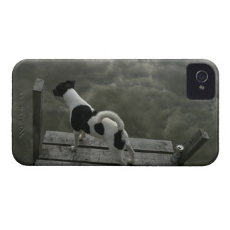Dog on Top of Roof iPhone 4 Case